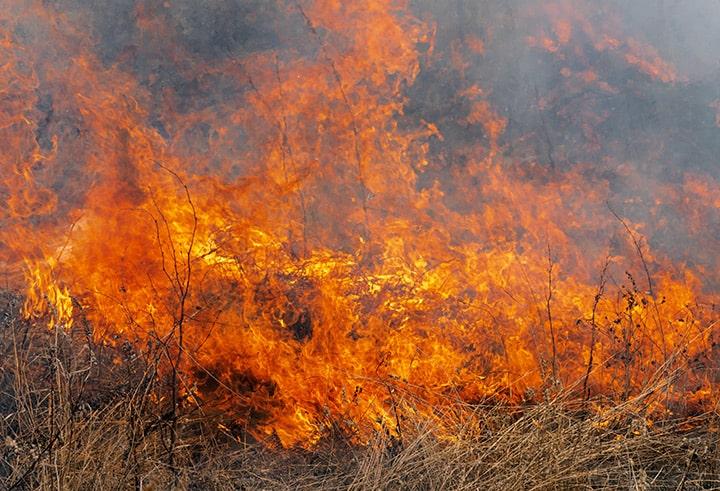 Пожари у Србији - НАССА